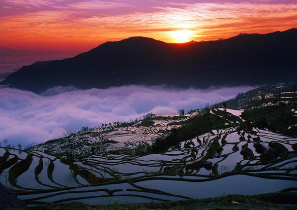 A kínai Jünnan tartomány rizsteraszai