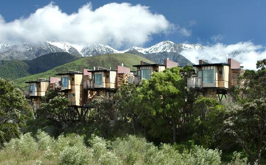 tree-houses-in-kaikoura