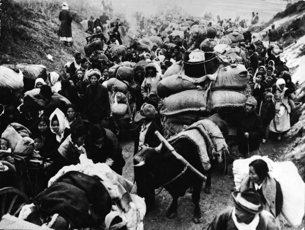 Észak-koreaiak menekülnek a háborús övezetből 1950-ben. A háború a két oldal katonaságában több mint félmillió áldozatot szedett, a civil halottak és sebesültek számát 2,5 millióra becsülik.
