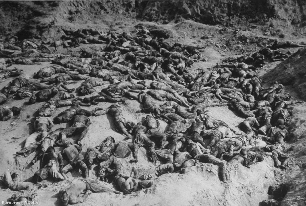 Kivégzett hadifogyok a taejoni csata után. Az ütközetet a majd másfélszeres túlerőben levő északiak nyerték, 2500 dél-koreai és amerikai katonát ejtettek foglyul.