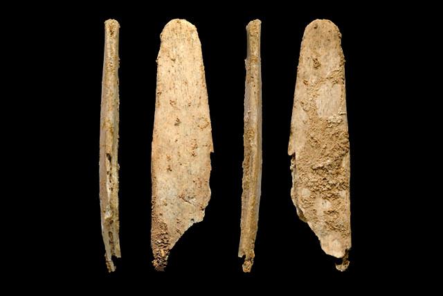 Neanderthal-lissoir-003