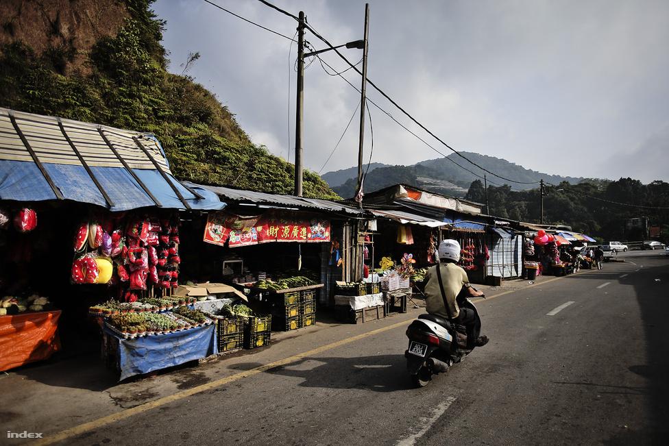 Reggeli piac a Cameron-felföldön, Brinchang közelében. A piacon friss gyümölcsöket,                         zöldségeket, helyben termelt epret és epres szuveníreket árulnak. A piacozás egyébként nagyon                          népszerű Malajziában, a reggeli mellett késő esti piacokat is sok helyen rendeznek, itt a hamis                          óráktól a pashmina kendőkön át műanyag kacatok tömkelegéig bármire alkudhatunk egy jóízűt.