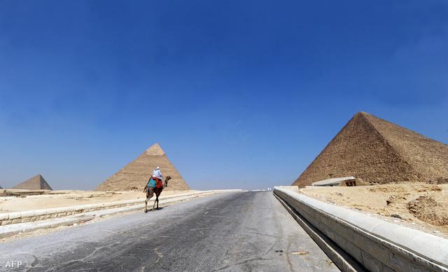 Lézengő tevegelő a gízai piramisoknál