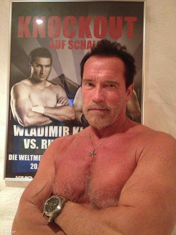 """""""Remek fotó! Fantasztikus látni, hogy az egyik kedvenc bajnokom ilyen jól nyomja a pózomat"""" – válaszolt Schwarzenegger Klitschkónak"""