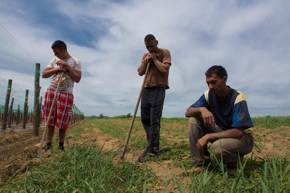 Kántorjánosi az ország keleti részében, Nyíregyházától néhány kilométerre fekszik. Több környékbeli falura                          jellemző, hogy alig van helyben munka (a munkanélküliségi ráta közel 40 százalék), és rendkívül nagy a                          szegények, azon belül is a nyomorban élők aránya. A település az egy főre jutó befizetett SZJA tekintetében                         az 5 százaléknyi legszegényebb település között volt 2009-ben. A romák az alig 2000 feletti lélekszámnak                         több mint harmadát adják. Közelről is, távolról is egyértelműnek látszik: az itt lakókon csak a csoda, de még                          inkább a csodák sorozata segíthet. A Kántorjánosihoz hasonló települések azok, amelyek miatt a hosszú távú                          munkanélküliségre megoldásnak látszó közfoglalkoztatást sokan pártolják, még ha az munkaként gyakran csak                         szemétszedést tud is ajánlani.