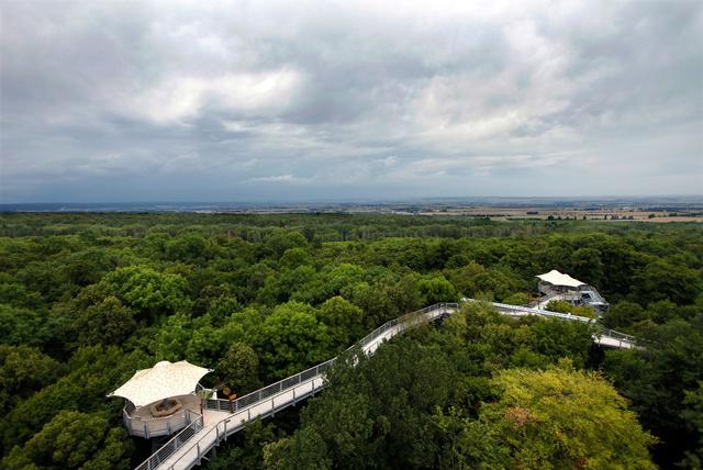 Hainich Nemzeti Park