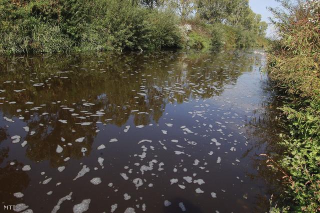 A Kapos vize a szennyezés következtében sötétbarna lett és szúrós szagú