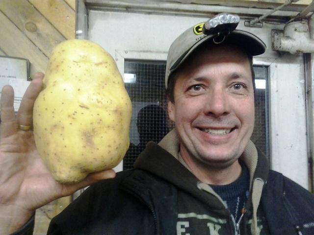 """""""A képen krumplival pózolok, de valójában repcét, zabot és árpát arattam a testvérem sógoránál."""""""