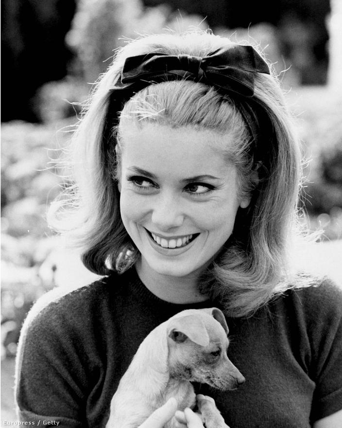 Ezen az 1962-es képen már mint színésznőt fotózták. Deneuve színészcsaládból származik, édesapja, Maurice Teynac (ő is művésznevet választott a Dorléac helyett), színházi és filmszínész volt, aki később szinkronrendezőként is dolgozott. Anyja, Renée Deneuve is színésznő volt, nagyanyja pedig színházi súgó. A családban négy lány született, a legidősebb, Françoise Dorléac szintén színésznő lett. Deneuve azért vette fel anyja vezetéknevét, hogy ne keverjék össze nővérével, aki akkoriben még híresebb volt nála.