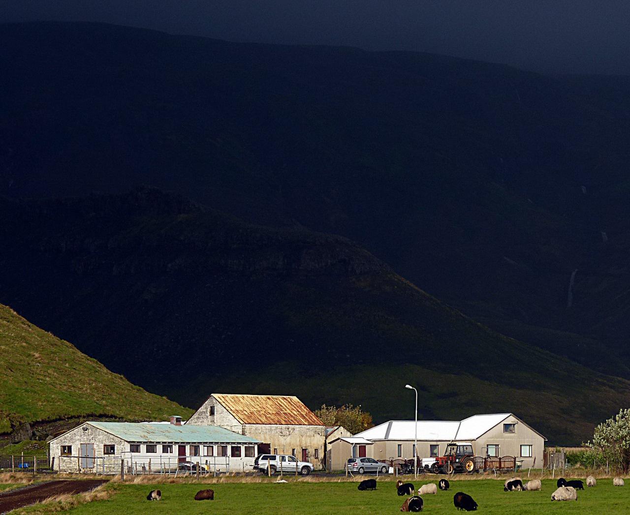 A Thorvaldseyri farm az 1-es főút mentén. Az áramot a közelben folyó hegyi patakra telepített kis házierőművel termelik, az állattartás mellett növénytermesztéssel is foglalkoznak a tengerpart mentén húzódó sík földeken