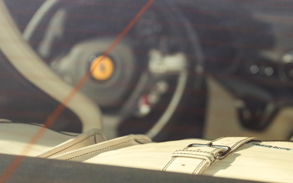 Josh Cartu, Magyarországon élő kanadai üzletember két Ferrarival képviseltette magát az eseményen, ezúttal csak nézőként. Az idei Gumball 3000-es versenyen is rajthoz álló férfi, F12-es Berlinettájának vajszínű, gyári bőrtáskája látható a képen