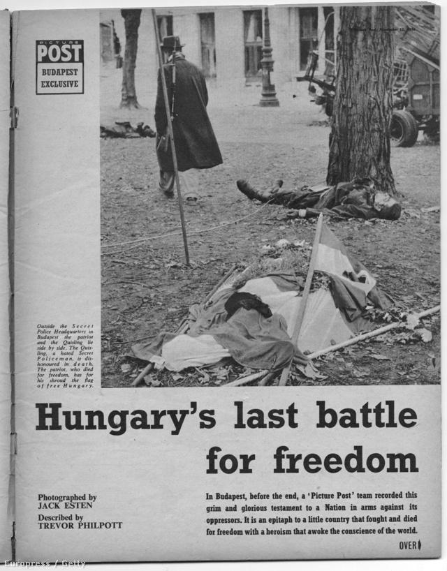 Az angol Picture Post magazin a LIFE-al egyidőben, 1956. november 12-én közölt először képes riportot az október 23-i és az azt követő eseményekről. A következő oldalakon megnézhetik, hogyan csodálkozhatott rá Európa a Budapesti eseményekre. A riport címe: Magyarország végső harca a szabadságért. A nyitóképen egy forradalmár és egy AVH-s tiszt holttestei.