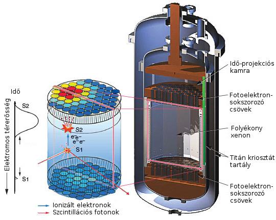 A LUX felépítése. A becsapódó WIMP szcintillációt okoz, illetve ionizálja is a xenon-atomot. A keletkező fényt és az elektron keltette áramot is detektálják a műszerek.