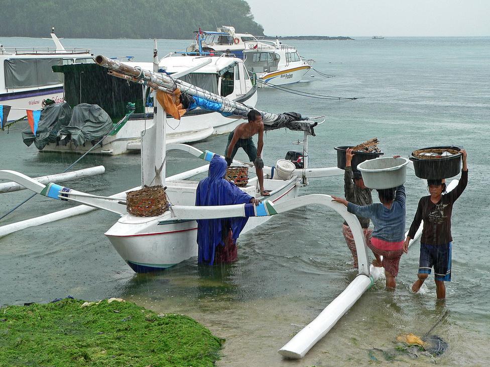 Kitárazás esőben: befutott egy jukung, azaz fából készített, támasztékos halászcsónak Padangbai kikötőjébe, és a friss fogást átpakolják a parton várakozó kisteherautóra. Balin a nők alaposan kiveszik a részüket a fizikai munkából: olyan súlyokat mozgatnak meg, olyan kemény munkát végeznek a rizsföldeken, amire nemhogy európai nő, de európai férfi se szívesen vállalkozna, ha nem nagyon muszáj. A halászat ezen a szinten nem sokat hoz a konyhára ezért mára sok halász átállt a turisták sétahajóztatására, illetve a búvárok szállítására