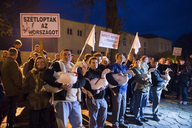 Libás tüntetés Nyírbátorban, 2013. novemberében