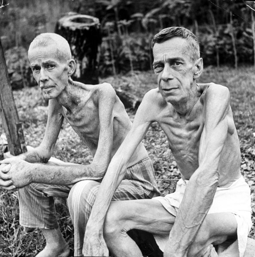 1945 februárjában sikerült felszabadítani a manilai Santo Tomas Egyetemet is, amelyet a japánok börtönné alakították át, Mydans is itt volt rab a háború elején. A csonttá soványodott rabok zöldségtermesztéssel próbálták magukat életben tartani, a kis veteményes látható mögöttük.