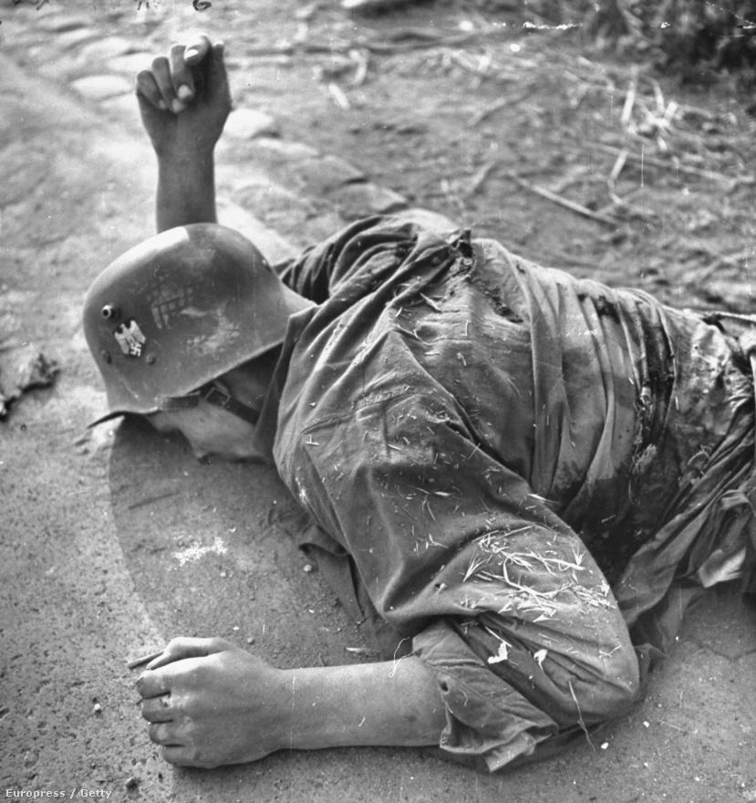 Az olasz hadjárat óriási veszteségeket okozott mindkét oldalon: a halottakon túl rengeteg sebesült volt, és nem csak a katonák szenvedtek, hanem rengeteg civil áldozat is. Mydans színes képei a Life magazinban sosem jelentek meg.
