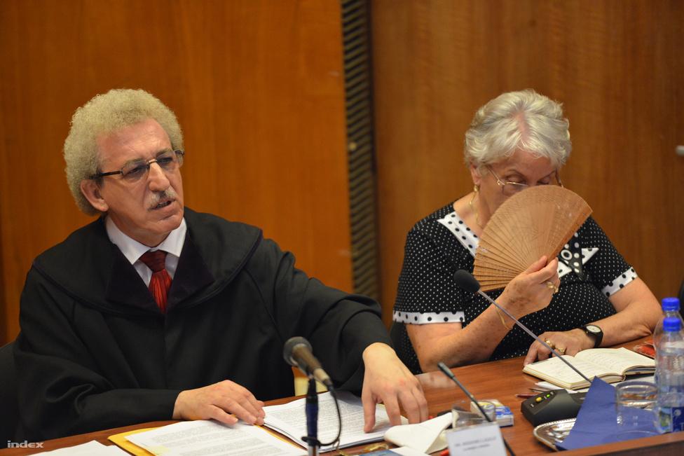 Tényleges életfogytiglanra ítélte augusztus 6-án első fokon a Budapest Környéki Törvényszék a romák elleni, hat halálos áldozatot követelő támadássorozat első-, másod- és harmadrendű vádlottjait. A bíróság szerint Kiss Árpád, Kiss István és Pető Zsolt bűnös előre kitervelten, aljas indokból, különös kegyetlenséggel, több emberen, részben 14. életévét be nem töltött személy ellen bűnszervezetben elkövetett emberölés bűntettében. A büntetését mind a négy vádlott fegyházban fogja letölteni, valamennyiüket tíz évre eltiltották a közügyek gyakorlásától. A törvényszék álláspontja szerint a fegyveres támadások mindegyikénél megállapítható volt az emberölés szándéka, még azoknál is, ahol végül senki sem sérült meg. A támadássorozat a galgagyörki támadással kezdődött 2008. július 20-án. Az első gyilkosságot Nagycsécsen követték el 2008 november 3-án. Nagy Józsefet és sógornőjét, Illés Évát gyilkolták meg. 2009. február 23-án Tatárszentgyörgyön a 28 éves Csorba Róbertet és 4 éves kisfiát lőtték agyon. Tiszalökön 2009. április 22-én lelőtték az 54 éves Kóka Jenőt. Az utolsó támadás 2009. augusztus 22-ről 23-ra virradóra történt Kislétán, ekkor meggyilkolták az ágyában alvó 43 éves Balogh Máriát, 13 éves kislányának pedig maradandó sérüléseket okoztak.
