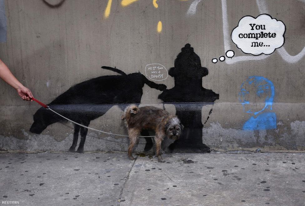 Egy kutyát megviccelt Banksy egyik legújabb graffitije New Yorkban, a 24. utcánál.