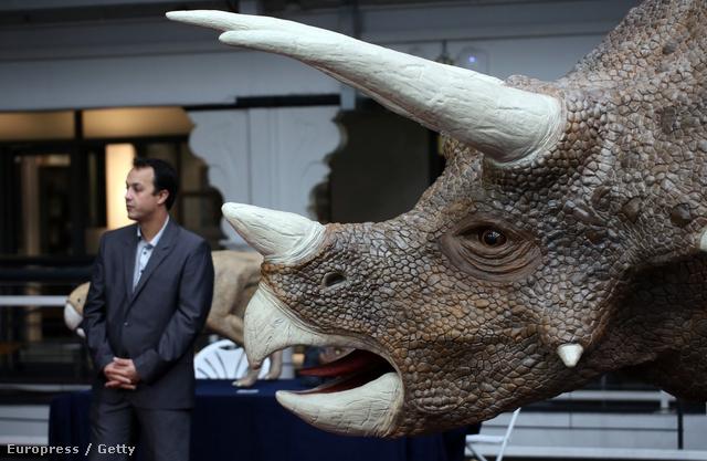 3D-ben nyomtatott Triceratops
