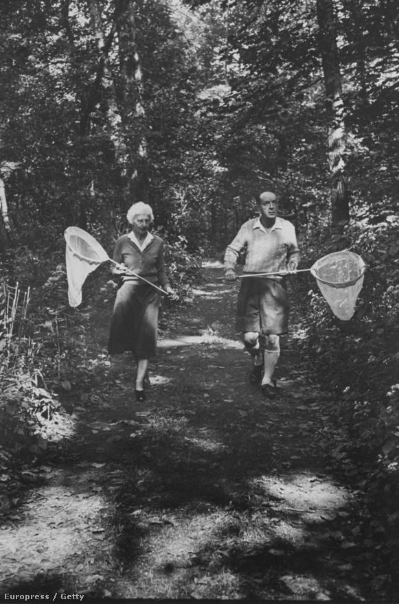 Mydans 1958-ban riportozott az ekkor már beérkezett orosz íróval, Nabokovval. Akinek az írás mellett még egy szenvedélye volt: a lepkegyűjtés. A képek Vladimir és felesége, Vera üldözik a pillangókat Ithaca-i otthonukban.
