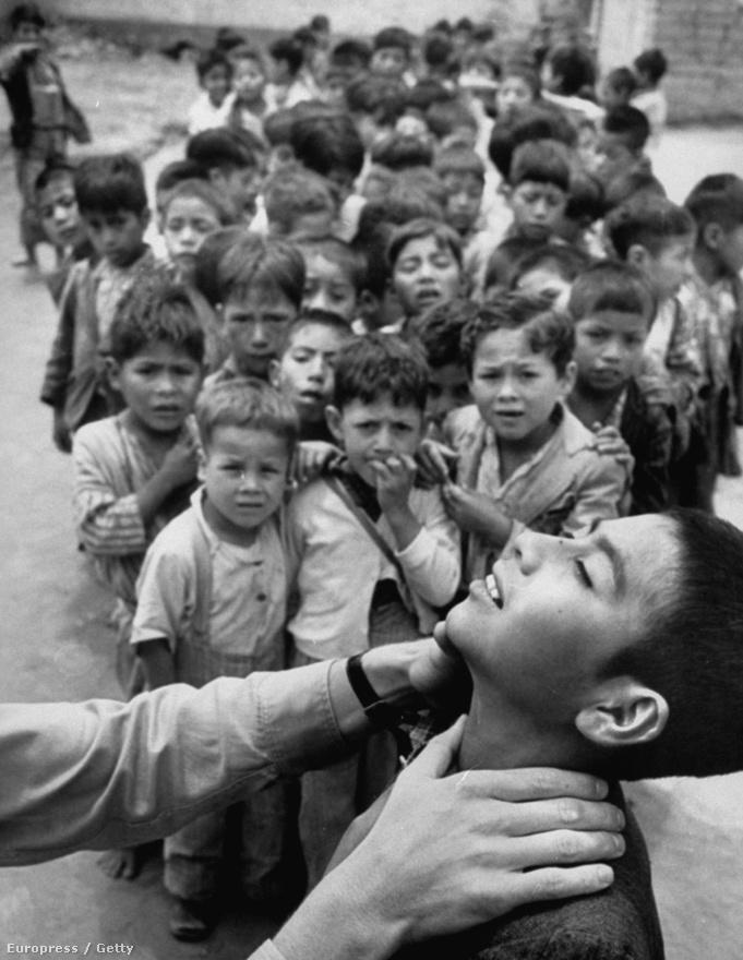 Cornell Capa híres volt a szociális érzékenységéről, egyik leghíresebb sorozatát értelmi fogyatékos gyerekekről készítette. Ezen a képen a Közétkeztetési Intézet munkatársa ellenőrzi, hogy nem golyvásak-e a gyerekek. Cornell egyébként maga is orvosnak készült, mert segíteni szeretett volna az embereken, később döntött úgy, hogy a fotográfiával többet tud elérni a kérdésben.