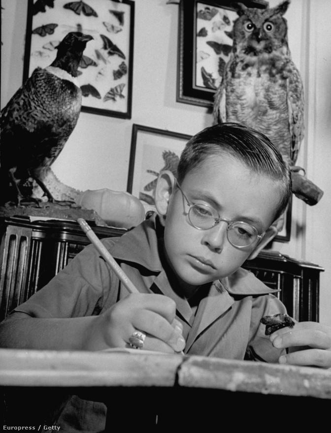 Gerard Darow, a negyvenes évek népszerű amerikai rádiós kvízjátékát, a Quiz Kids c. műsort vezető zsenigyerek egy könyv felett. Myron megszakította tanulmányait, hogy fotóriporter lehessen, de az oktatás témájához vissza-visszatért munkássága alatt.  Gerard négyéves korában már 365 madárfaj nevét ismerte, de 47 évesen halt meg szörnyű életkörülmények között, ugyanis sosem tudta feldolgozni zseni voltát, nehezen illeszkedett be a társadalomba.