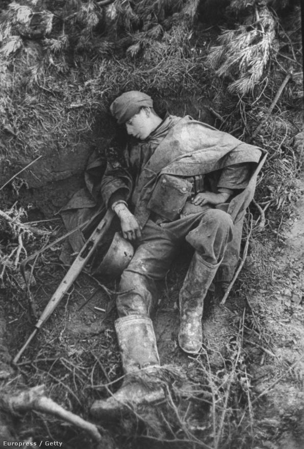 A brit offenzíva egyik áldozata, egy német tizenéves a holland hadszíntéren, 1945-ben, a háború utolsó évében. Silk nem a háborút akarta fotózni - írta róla később a szerkesztője. Robert Capát a háború érdekelte, Bourke-White is a háborúért volt oda, ők az egésznek a nagyságát fogták meg, és formálták a képükre. Silk egyszerűen csak ott volt a katonák mellett, és megmutatta, milyen egy egyszerű embernek a frontvonalban lenni. Ilyen.