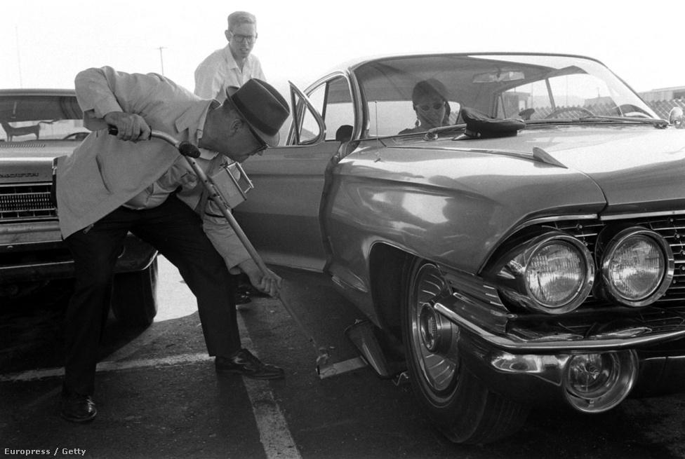 A mexikói határon hosszú sorokban kígyóztak az autók, mindegyiket átnézték, átkutatták alaposan. Több mint 226 kiló marijuánát foglaltak le az akció során, a San Diegóban őrzött lefoglalt kábszit végül téglánként égették el.