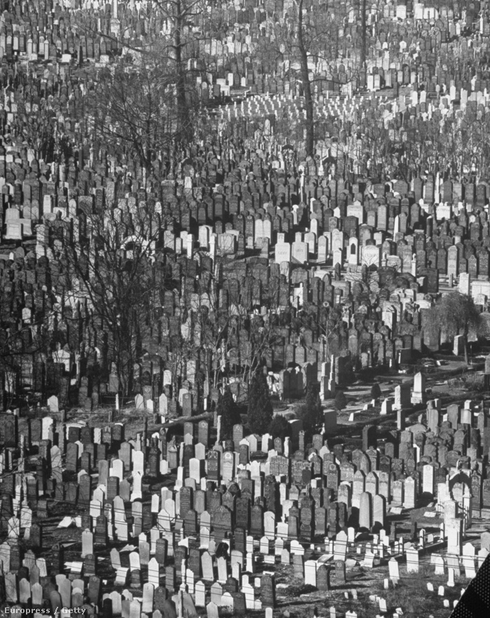 A szerkezet, a kompozíció, az egyensúly, a ritmus, a harmónia - ezek voltak Feininger hívószavai. Még a legellentmondásosabb témáról is készülhet fotó, ha egy érzékeny fotós megfelelő őszinteséggel, együttérzéssel és megértéssel közelít - vallotta később egyik írásában. A képen sírkövek sorakoznak a Queens-i temetőben.