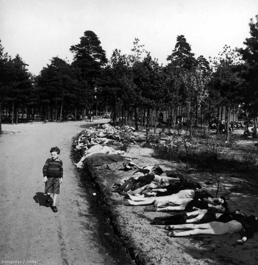 """Rövidnadrágos fiú sétál többszáz fogoly holtteste mellett a Bergen-Belseni haláltáborban. Rodgert annyira sokkolta az élmény, hogy többet nem volt hajlandó háborús fotósként dolgozni. Nem is a holtestek látványa kavarta fel igazán, hanem a saját közönye. Hogy a holttestekben csak az érdekelte, hogy minél előnyösebb szögből fotózza őket, és aztán minél jobb képaláírást találjon ki hozzájuk. """"Nem is az volt a baj, hogy mit kell fotóznom, hanem hogy hogyan hatott rám. Az egész borzalomban, hogy 4000 halott és halálra éheztetett rab hever körülöttem, csak a minél jobb beállításokra tudtam gondolni. Valami történt velem, és ennek véget kell vetnem."""""""