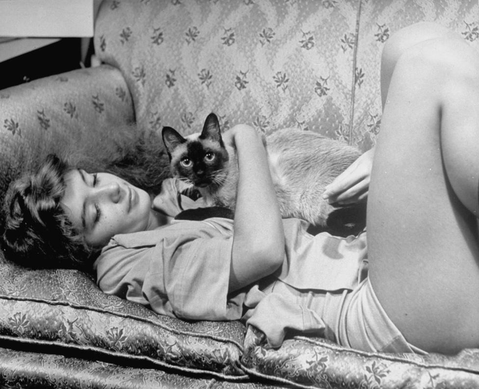 1940.Eisenstaedt egyszemélyben testesítette meg a Life magazin filozófiáját: nemcsak a fotói voltak vidám hangulatúak, de ő maga is egy kellemes jelenség volt, kollégái áradoztak a vele töltött boldog pillanatokról. A képen Edwina Seaver balerina pihen egy kanapén sziámi macskájával.