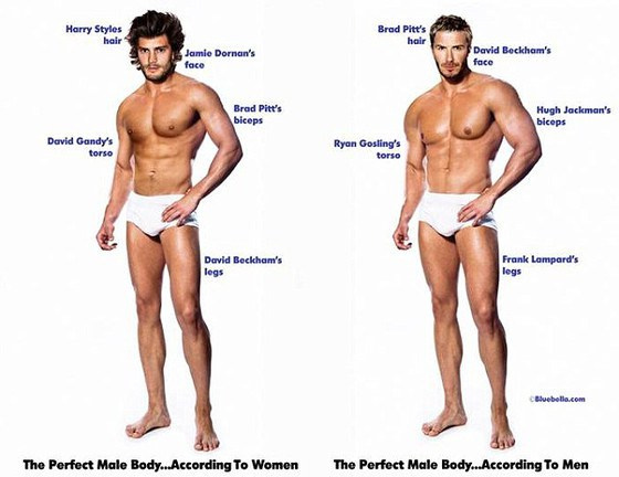 rs 560x432-140410105332-perfect body male bluebella
