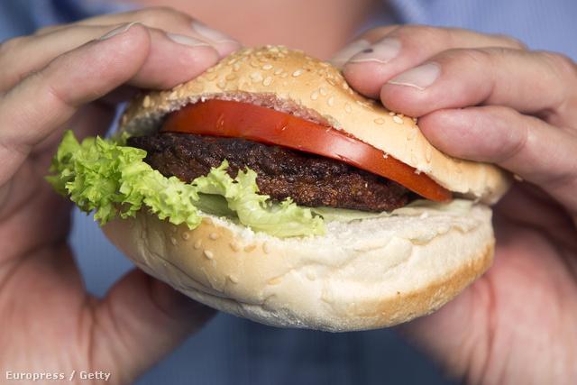Az első mesterségesen növesztett húsból készített hamburger