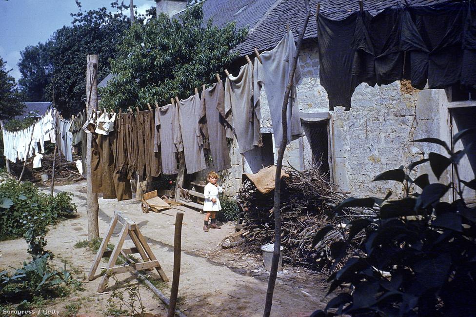 Kisgyermek egy pólókkal és egyéb tábori öltözékekkel megrakott ruhaszárító kötél mögött, nem sokkal azután, hogy a szövetségesek megtisztították a normandiai régiót, 1944 augusztusában.
