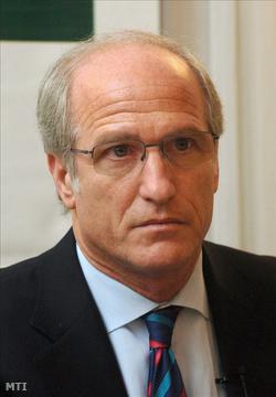 Surányi György