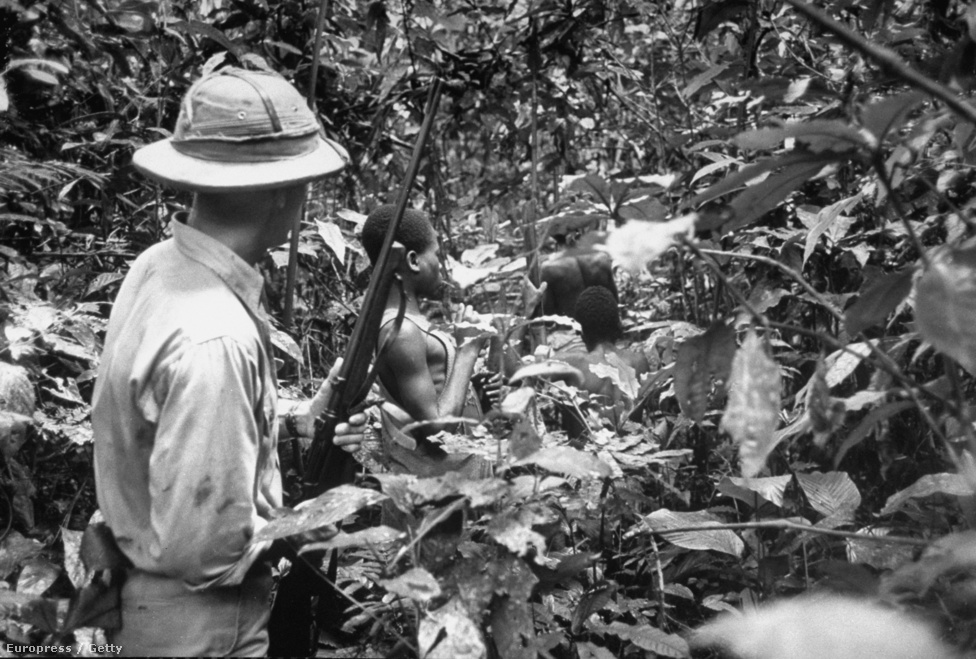 Gorillavadászat a dzsungelben. A LIFE magazin sokat foglalkozott a gorillavadászattal. 1951-ben jelent meg az első nagyobb cikk Eliot fotóival, ami bemutatta a vadászatot az őslakosok és a nyugati vadászok szemével is. Eliot egy 26 éves amerikai vadásszal járta az erdőt, aki állatkerteknek és gyógyszercégeknek fogott állatokat.