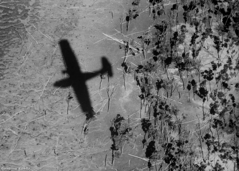 Eliot gépe Új-Guinea egyik mocsaras területe felett. A II. világháború után Eliot szinte kizárólag Afrikában dolgozott. 11-szer utazott Afrikába, első útján még haditudósítóként, a brit csapatokat kísérve, később egy fotólaborrá alakított mentőautóval, amivel átszelte az egész kontinenst.