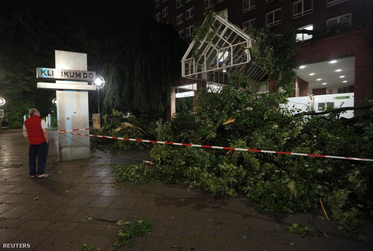 Kicsavart fa dőlt egy kórház bejáratára Dortmundban