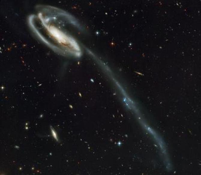 Dwarf-galaxies-in-tidal-model