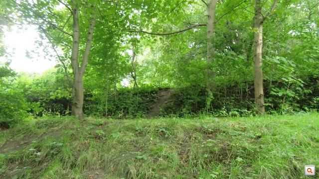 Bár a növényzet elhomályosította a nyomokat, kavicsbánya vonalait máig magán viseli a terület