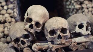 Erotikus regénybe kerülhetnek az IKEA-táskákban lelt csontok