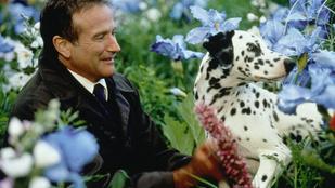 Kijött Robin Williams utolsó filmjének trailere