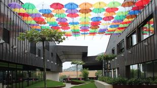 Ennyi ernyővel már lehet örülni az esőnek