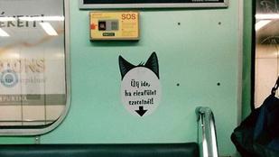 Menő: cicafül a hármas metrón