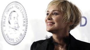 Itt a bizonyíték, hogy Sharon Stone nem botoxoltat