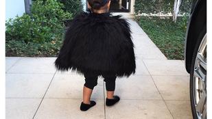 Kardashian szőrmében járatja másfél éves kislányát