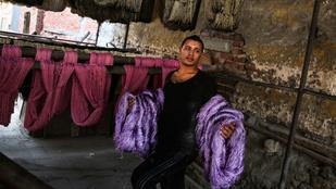 Festőbuzérral színezik a ruhákat Egyiptomban