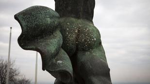 Tudja, mire való egy szobor hátsója?