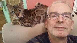 Elkapták a melltartó nélkül menekülő izlandi macskatolvajt!